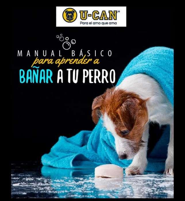 Peluqueria Canina Y Mas Manuales Digitales Pdf
