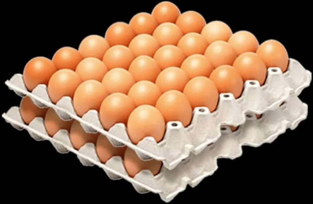 Venta de Huevos Al por Mayor Y Menor