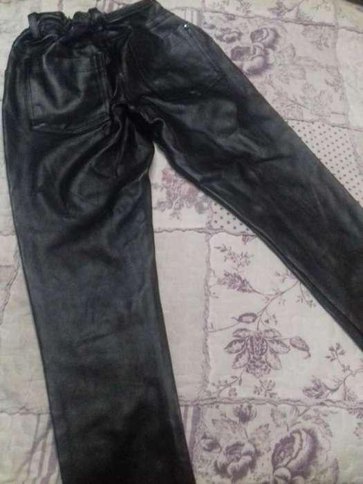 Pantalon Cuerina Cheeky T 8