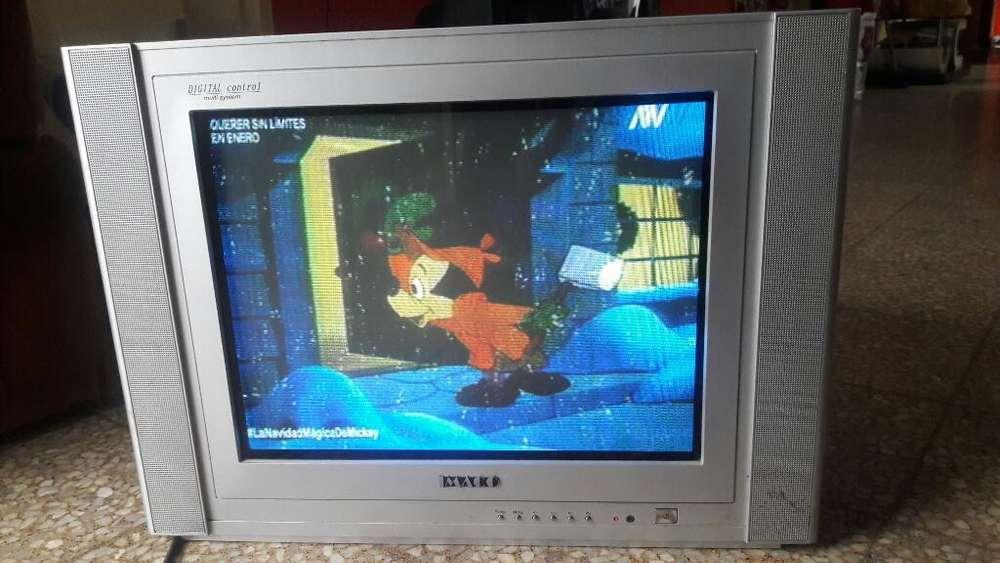 Televisor de 21 Pulgadas Imaco
