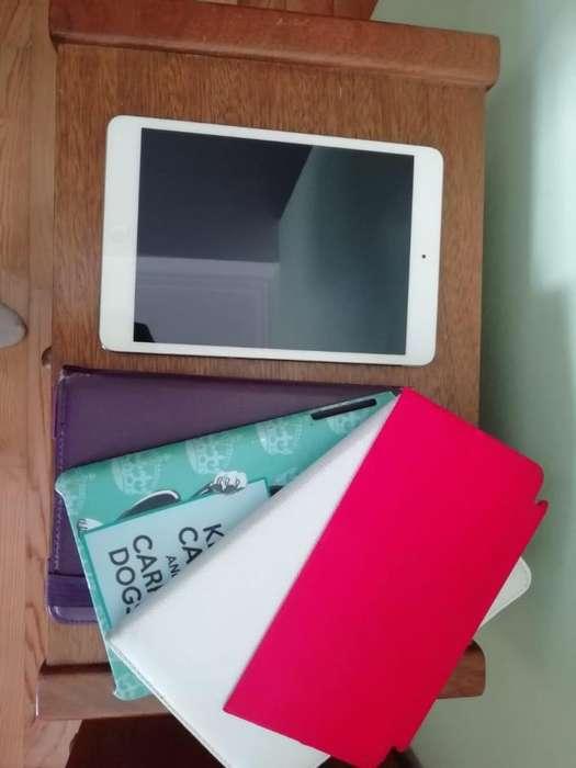 iPad Mini con Retina Display Usado