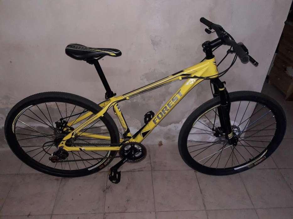 Bicicleta Rodado 29 Forest