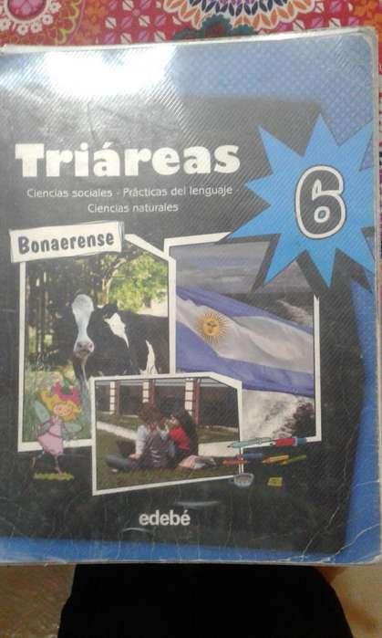 Triareas 6 Bonaerense