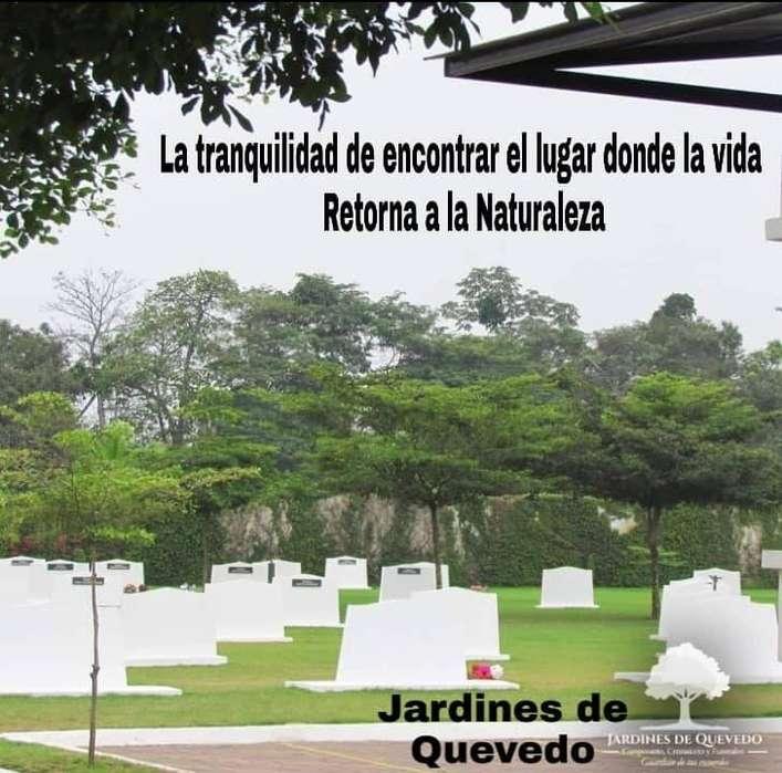 Osario de pared o nicho con título de propiedad en Camposanto Jardines de Quevedo