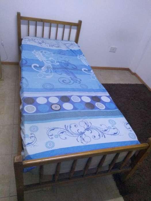 Vendo <strong>cama</strong> de Una Plaza con Colcho Y Dvd