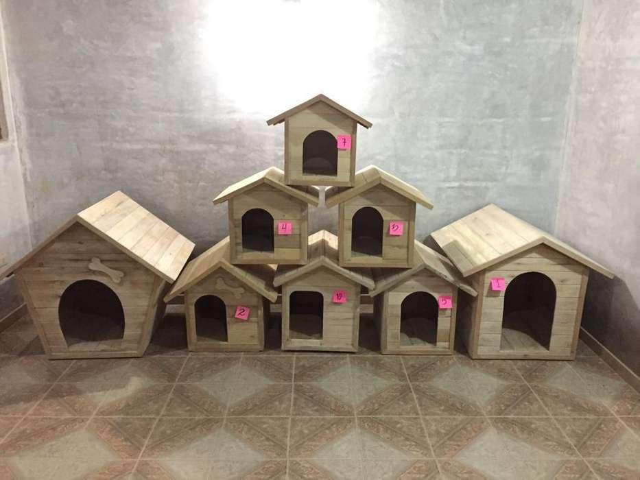 Casas Perros Y Otros Animales