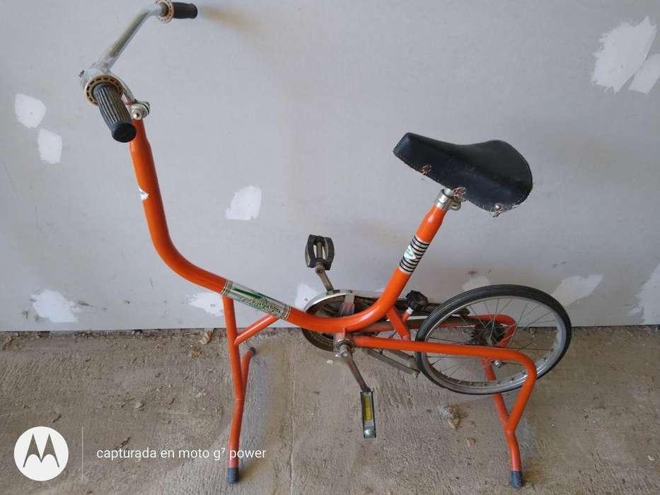 Bici Vintage Antigua Fija