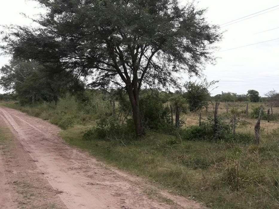 Vendo Hermoso Campo para La Cria de Gana
