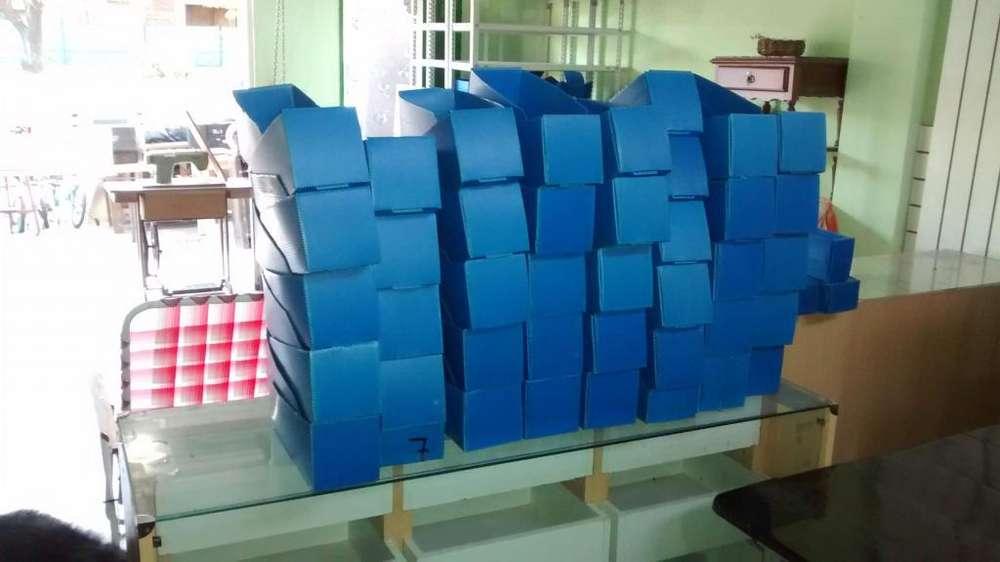 cajas ordenadoras plasticas de 10 cm.x30cm.10c/u