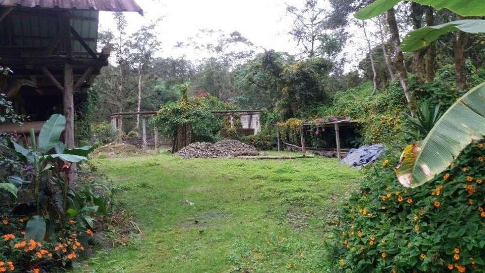 Venta de 114 hectareas de terreno con rio de agua cristalina en Mindo.