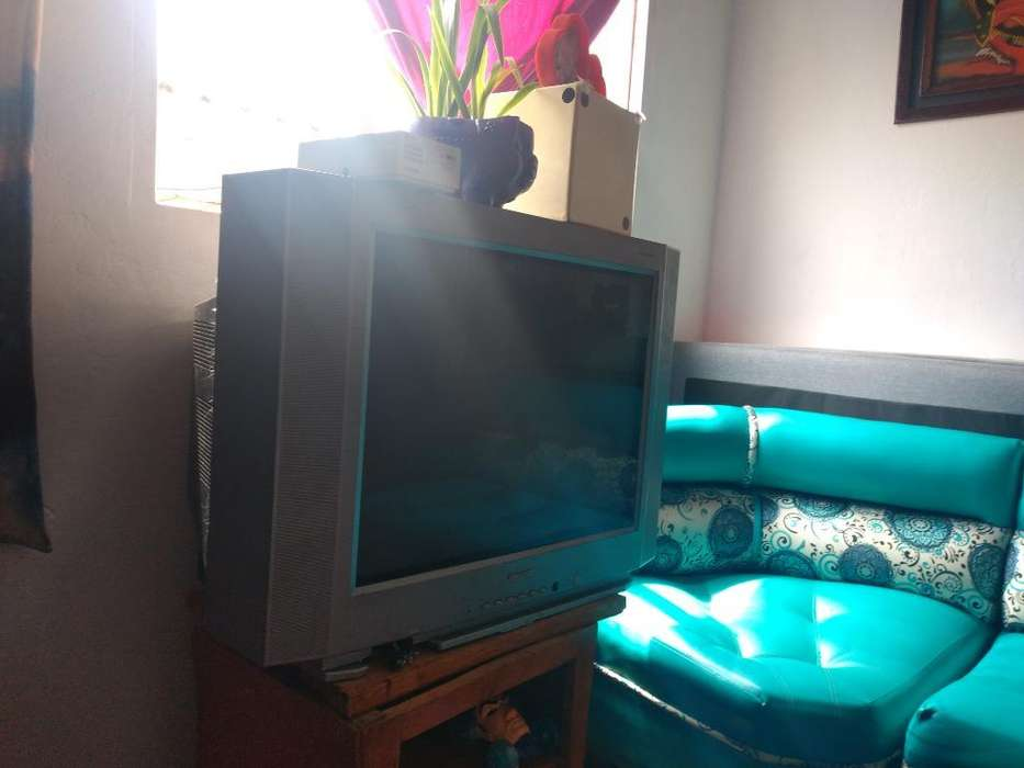 Televisor Challenger de 29'