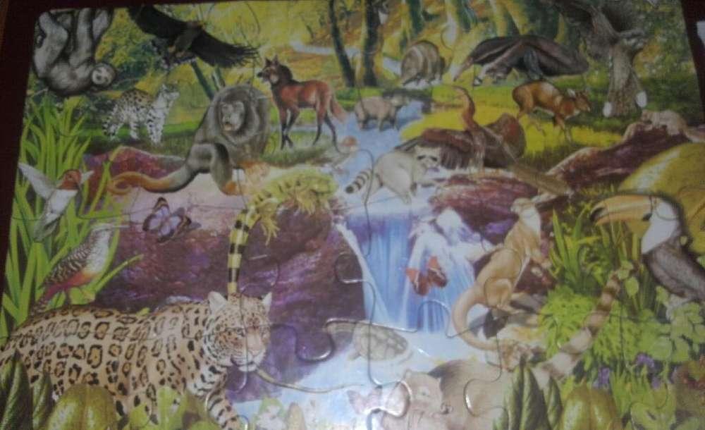 Rompecabeza La Selva 24piezas 45x30