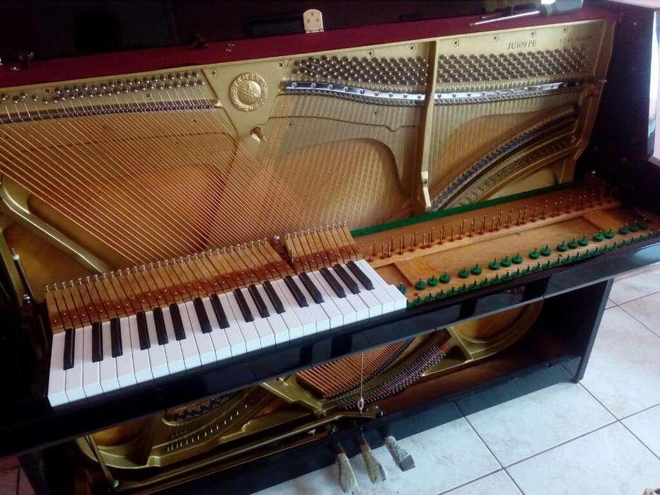 Técnico Afinador Pianos Clasicos