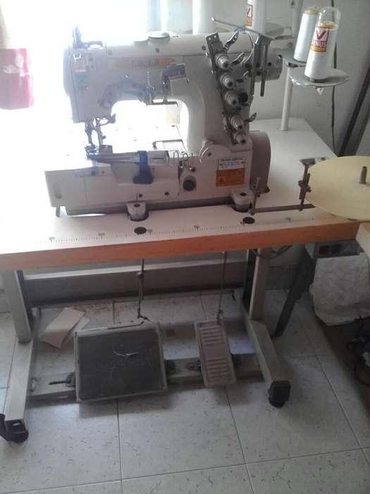 Collarin Industrial Tel 3107164853