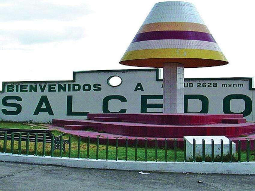 ACCIONES Y DERECHOS COOP SALCEDO CARGA LIVIANA MERCADO CENTRAL SALCEDO