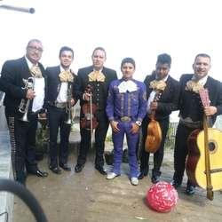 Serenatas con El Mariachi Ases de México