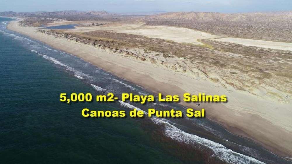 OCASIÓN VENDO TERRENO DE 5,000 M2 EN PLAYA SALINAS EN TUMBES