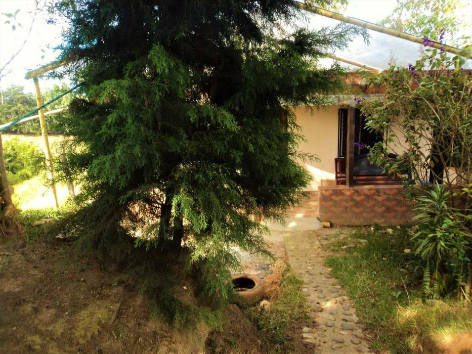 Casa finca en arriendo en Rionegro Antioquia - Vereda El Vergel
