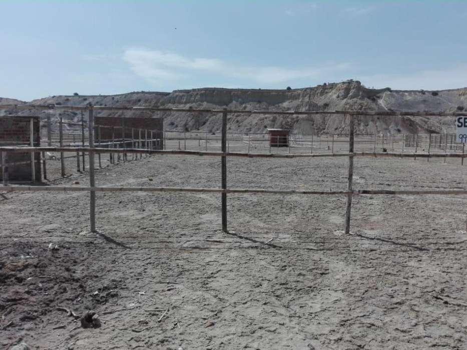 Terreno Playa Colan