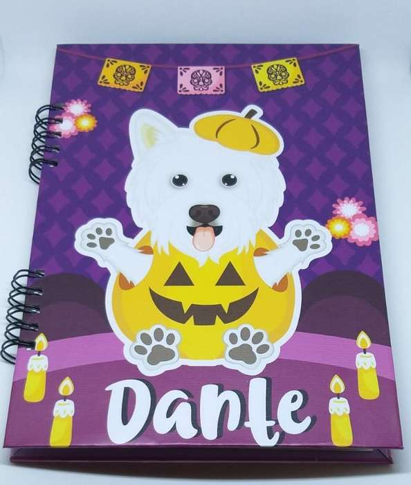 Cuadernos ilustrados 100% personalizados