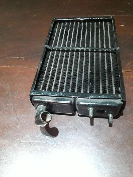 Vendo Radiador Calefaccion Fiat Super Eu