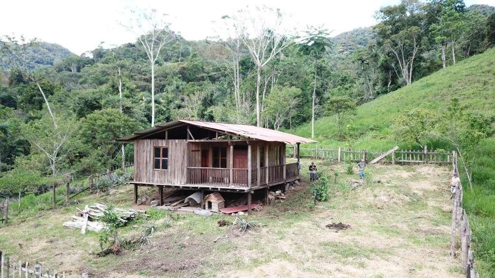 Finca ganadera de Venta en Soacapa, parroquia Guadalupe en Zamora Chinchipe
