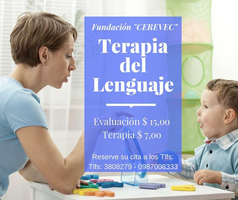 TERAPIA DEL LENGUAJE - VALLE DE LOS CHILLOS - 0995222560
