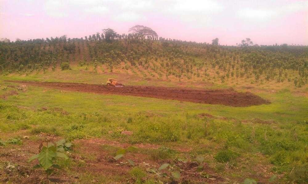 Hacienda 400 hectareas de terreno agricola, Finca Via Balzar - Olmedo
