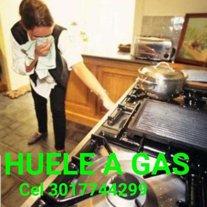 Huele a Gas Mi Estufa