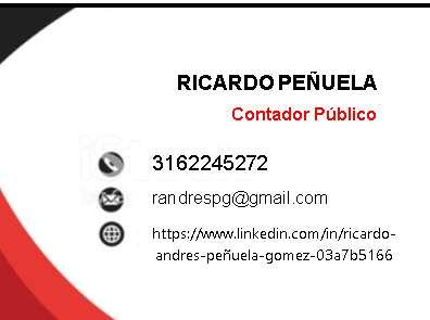 <strong>contador</strong> Público