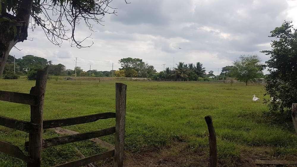 F02 - Finca Ganadera en Venta 250 hectáreas en Chone - Manabí