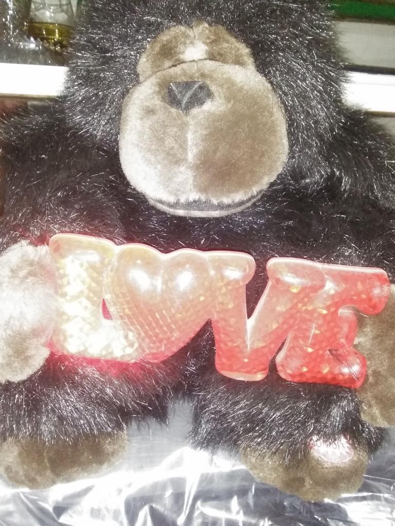 Chimpancé Del Amor Canta Y Alumbra