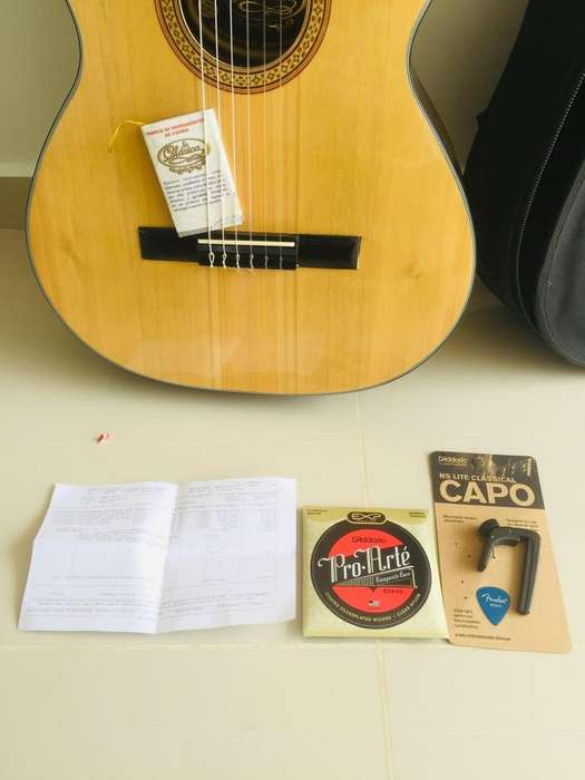 Combo Guitarra acstica transportador encordado proarte estuche se