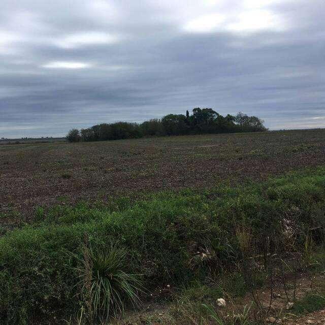 Vendo Campo Ejido Segui por ruta provincial N 35