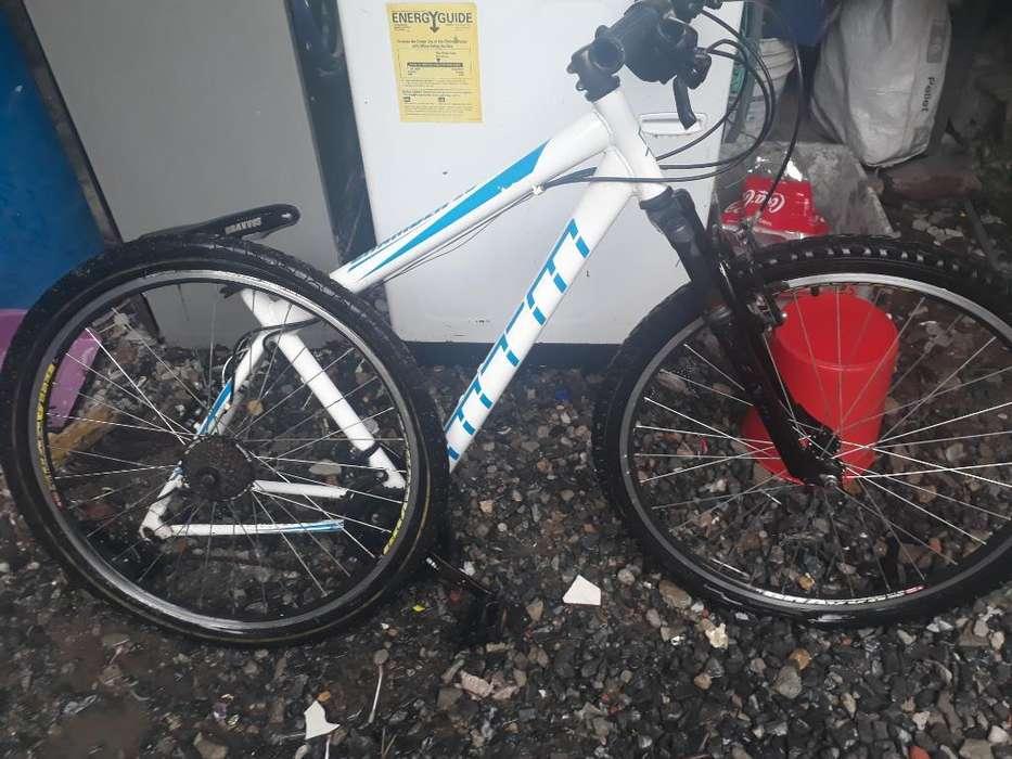 Biscicleta Chamber26 Bravvos Profesional