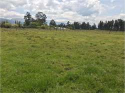 Vendo Hermoso Terreno 32.800 m en Pifo, Quito, Pichincha