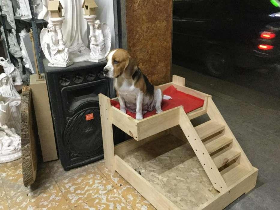 Vendo casa para perro o gato Madera pino