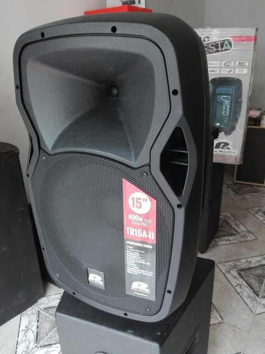 Cabina Activa de 15 Pro Audio