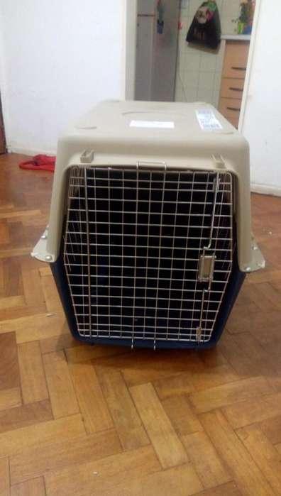 Kennel guacal o transportin para perro nro 350 apto IATA