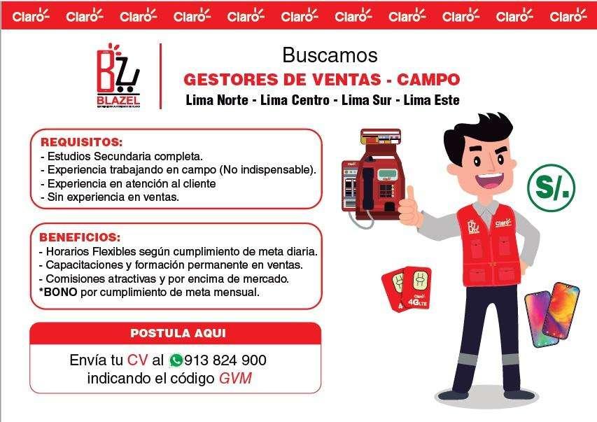 GESTOR DE NEGOCIOS - CAMPO