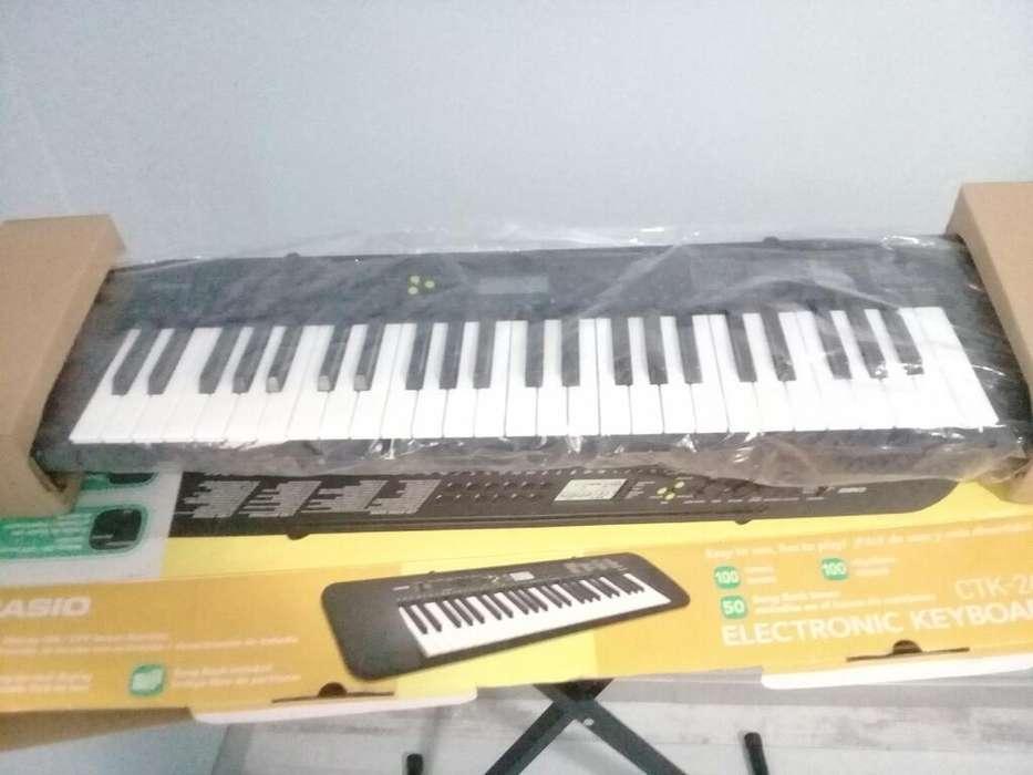 Organo Casio Modelo Ctk 245 Completo