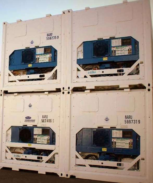 Carrier Camara de Congelados Container