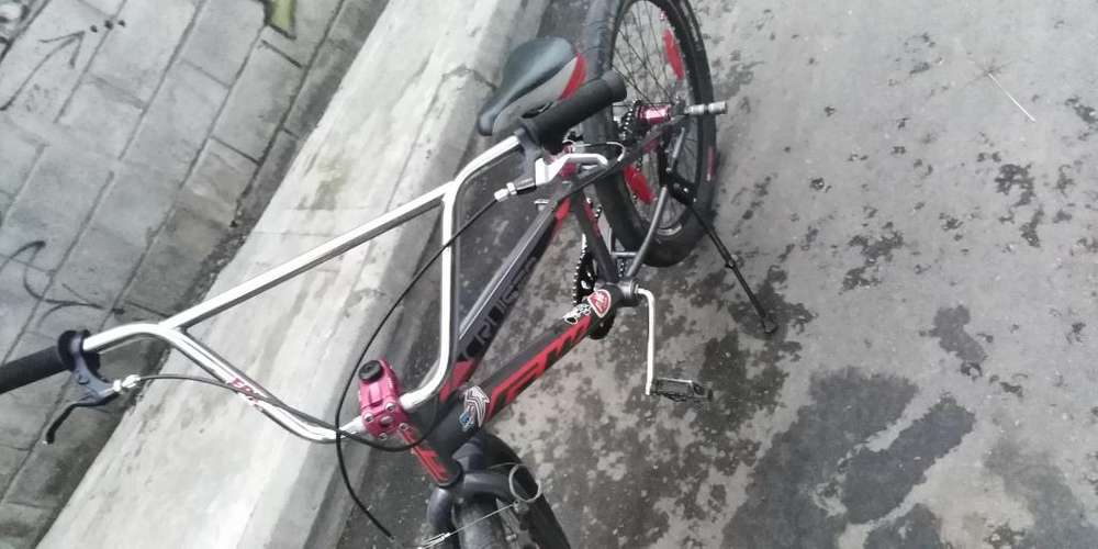 Bicicleta Cruzeiro