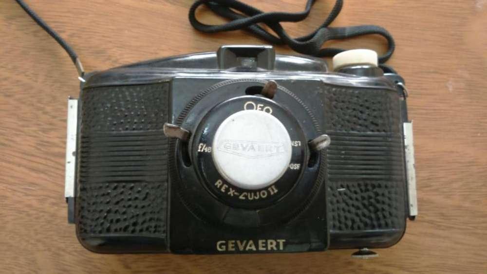 Antigua y rara cámara Gevaert