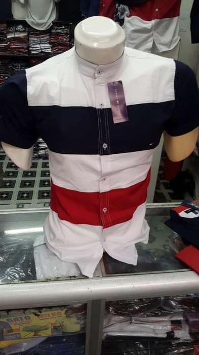 Camisa Tommy Manga Corta