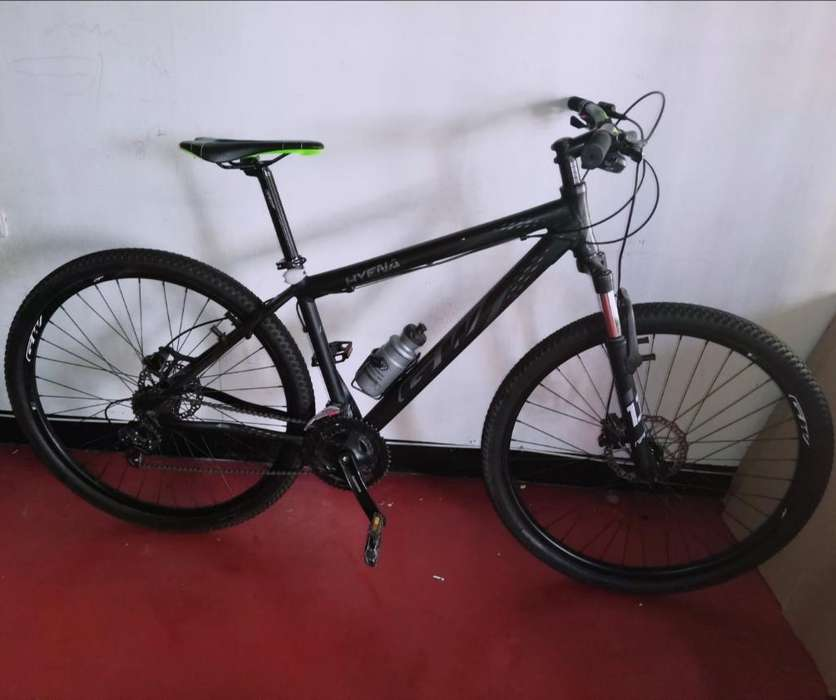 Bicicletas Gw Rin 29