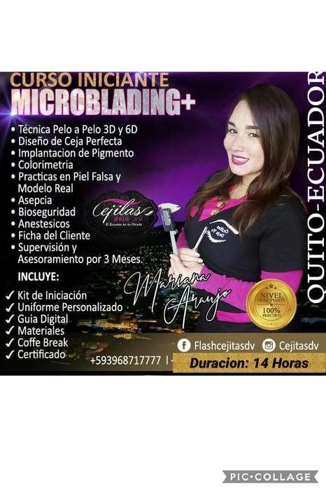 Curso Personalizado de Microblading