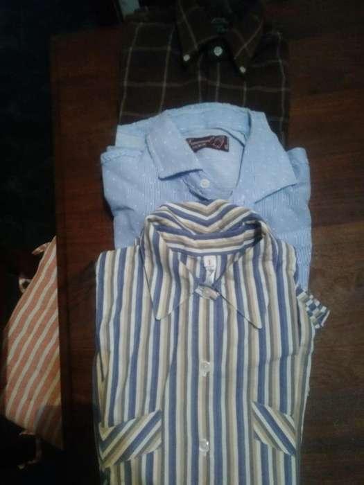 Lote de Camisas Talle M
