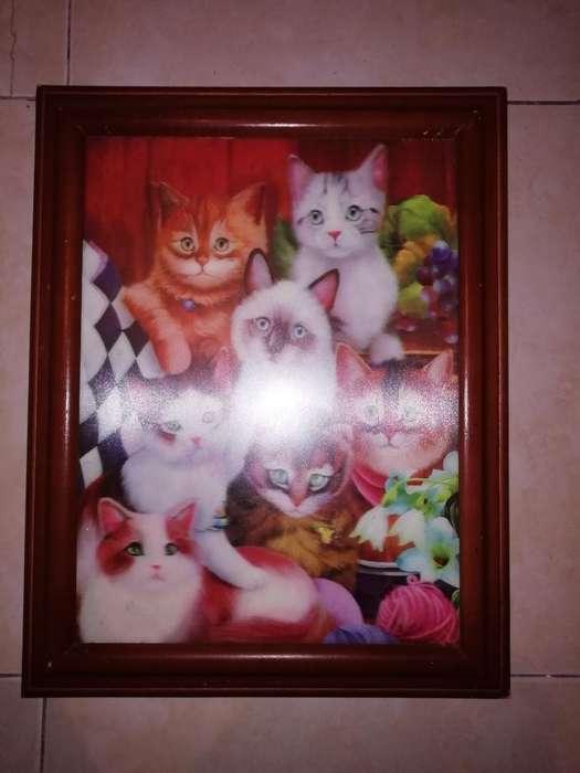 Cuadro Gatos