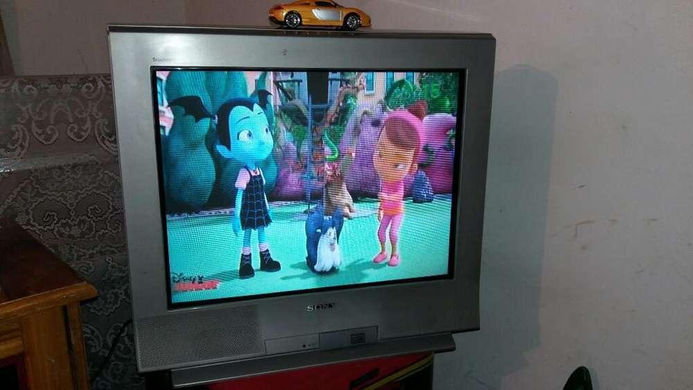 Vendo Television Slim Sony 29 Pulgadas